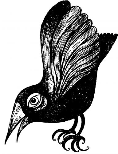 ilustracja kruka